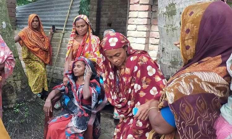 ঝিনাইদহে সাপের দংশনে নানি-নাতির মৃত্যু